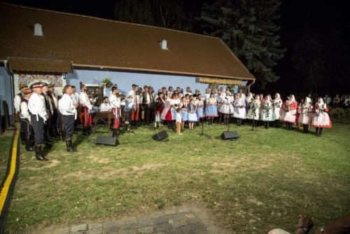 Dolní Bojanovice 8/2020